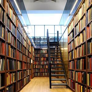 Библиотеки Опочки